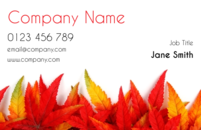 The leaves were specially taken from New England, in the fall, to give these business card templates a sophisticated feel. Just as your customers appreciate your hard work, hopefully all you florists and gardeners will appreciate our hard work in putting the design together for these business cards.