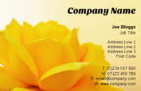 A beautiful yellow rose set against an early dawn sky on this business card design is a great template for florists or gardeners who want a lovely flower on their card.