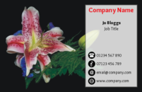 This business card has a lovely floral image in it, making it suitable for florists and gardeners.