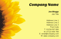 This sunflower based business card template is popular with garden centres and gardeners alike.