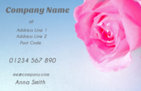 Lovely image of a pink rose in a business card design template which florists and wedding planners often use.