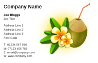 Coconut and the scent of a nice tropical holiday are the theme of this business card design